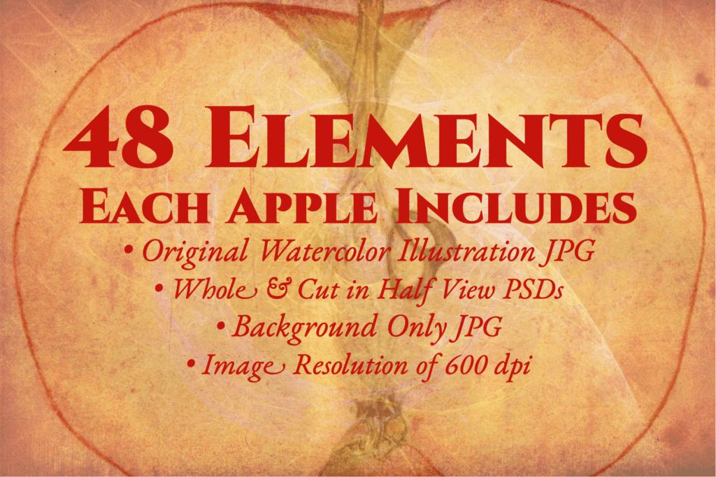 Authentic Vintage Watercolor Apples Vol. 1 Preview 2
