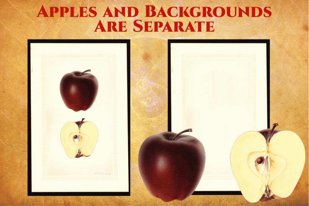 Authentic Vintage Watercolor Apples Vol. 1 Preview 4