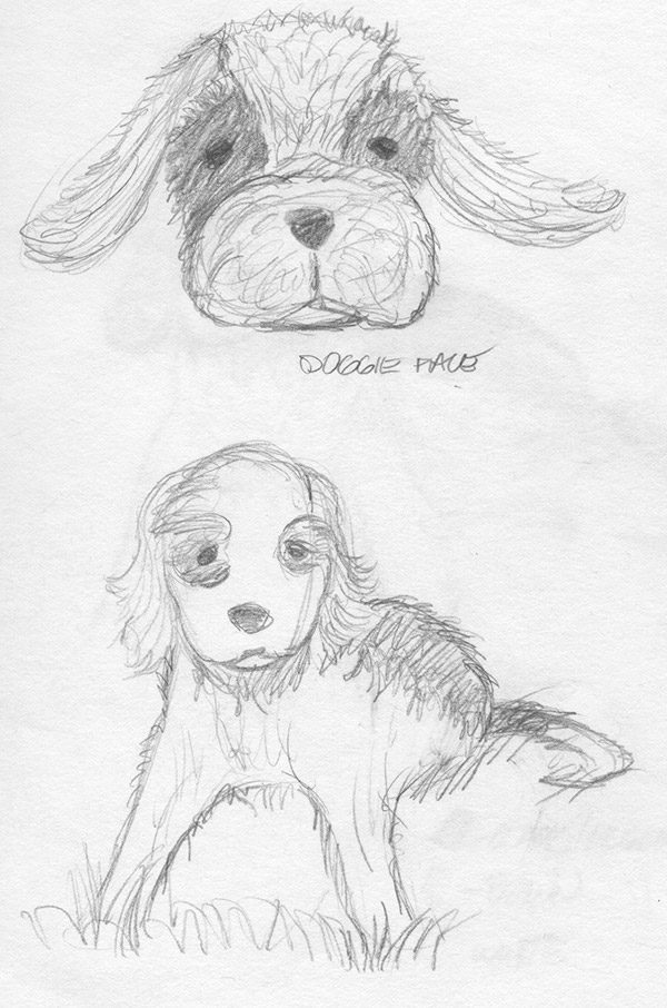 Sketches of Doggie Toy