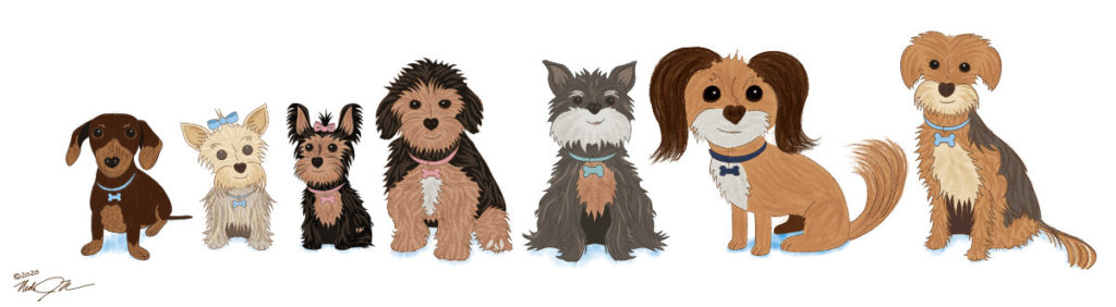 The Paws Family: Harley, Gracie, Zozo, MoMo, Miss Mia, Molly Paws, and Macy.