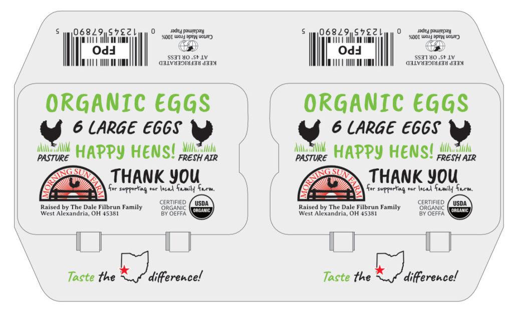 MSF egg carton TWIN6PK