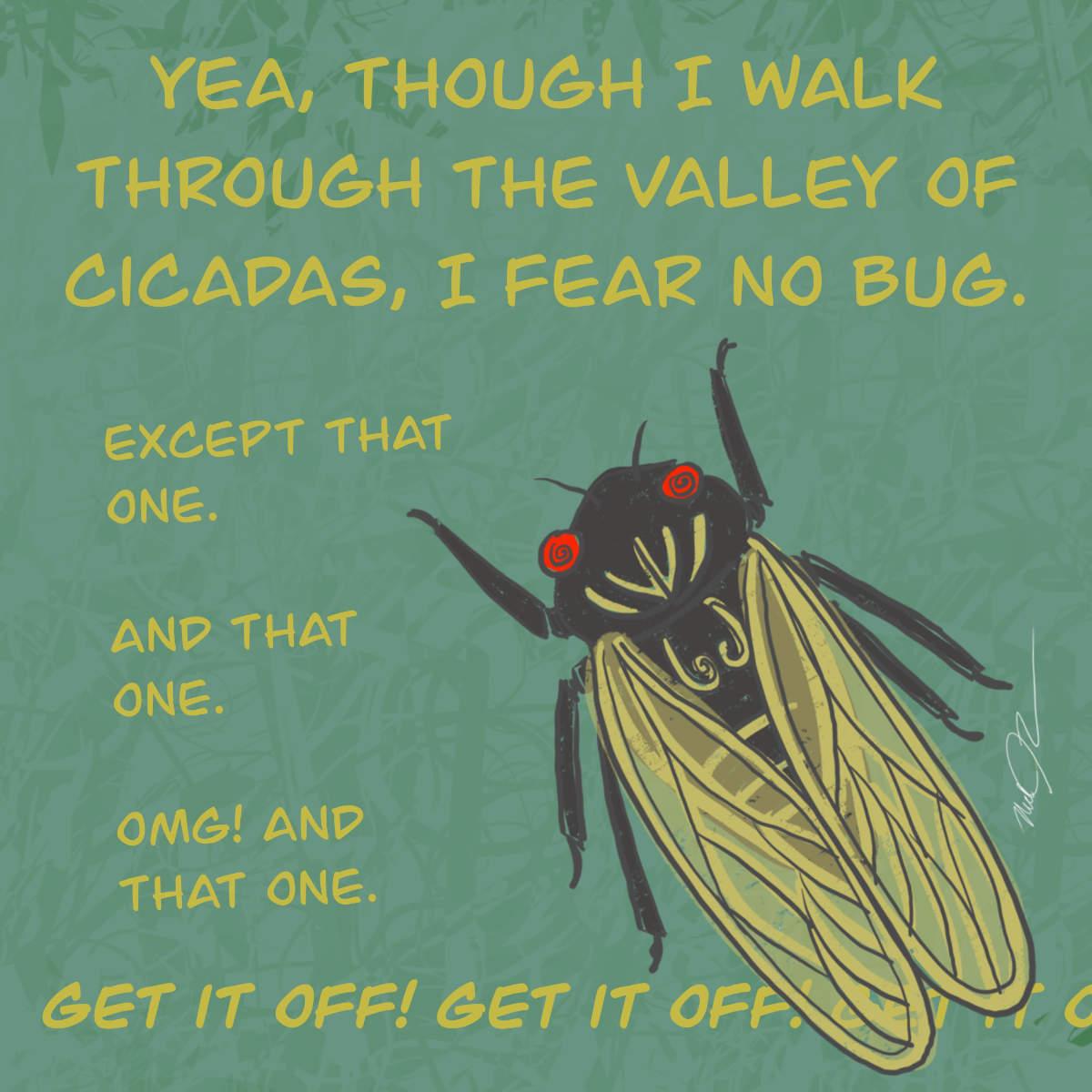 Cicada Poem SquareWEB